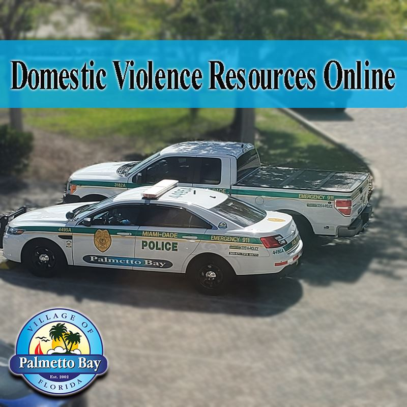 Domestic Violence Resources Announcement