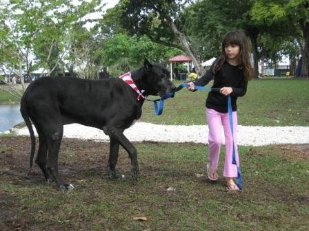 Little Girl and Great Dane